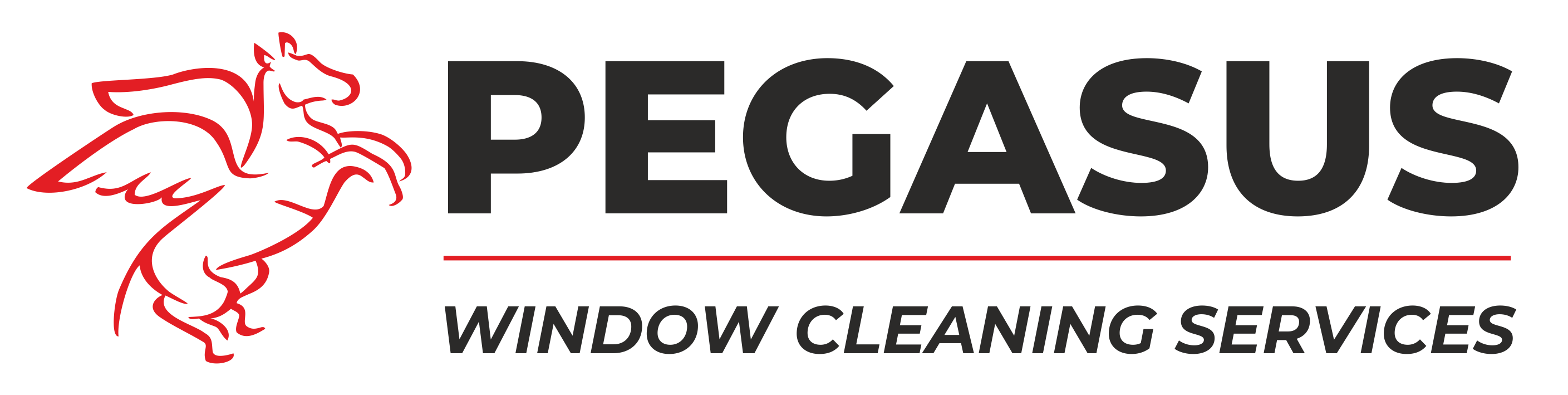 Pegasus Window Cleaning Bristol